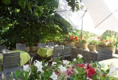 la terrasse des petits déjeuners